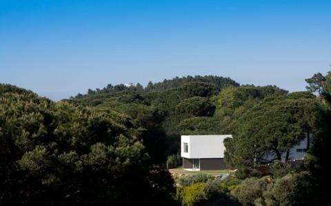 GODIVA HOUSE | CASA GODIVA